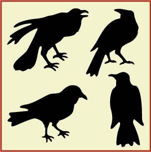Crow Flock 1