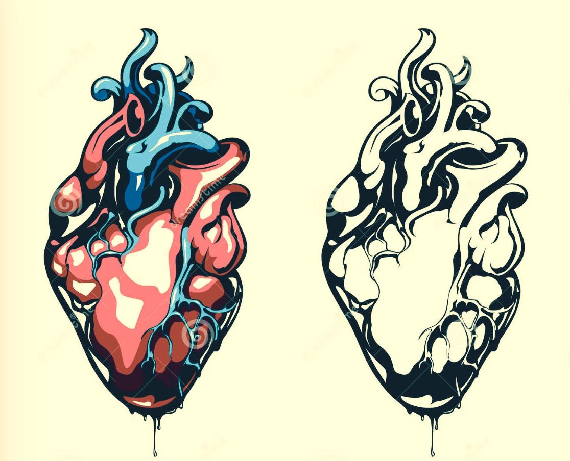 Pin von franzi auf heart   Pinterest   anatomisches Herz, Herzchen ...