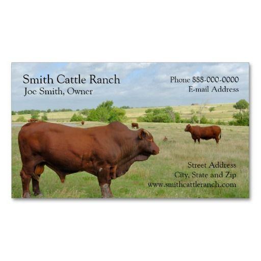 Cattle dairy farmer business card business cards business and cattle dairy farmer business card colourmoves