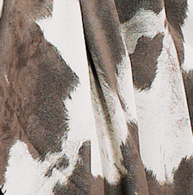 Western Shower Curtains: Cowhide Star Shower Curtain|Lone Star Western Decor