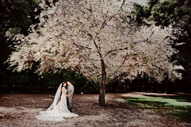 My Journey To Plan A Incredible Socal Wedding On Budget VENUE Descanso Gardens La Canada Flintridge CA