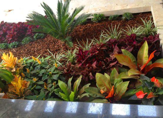 10 propuestas de jardines pequeos y encantadores Patios