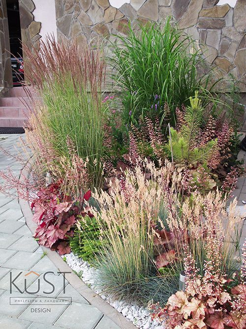 Pin by helene on Garden--Grass Pinterest Garden, Garden