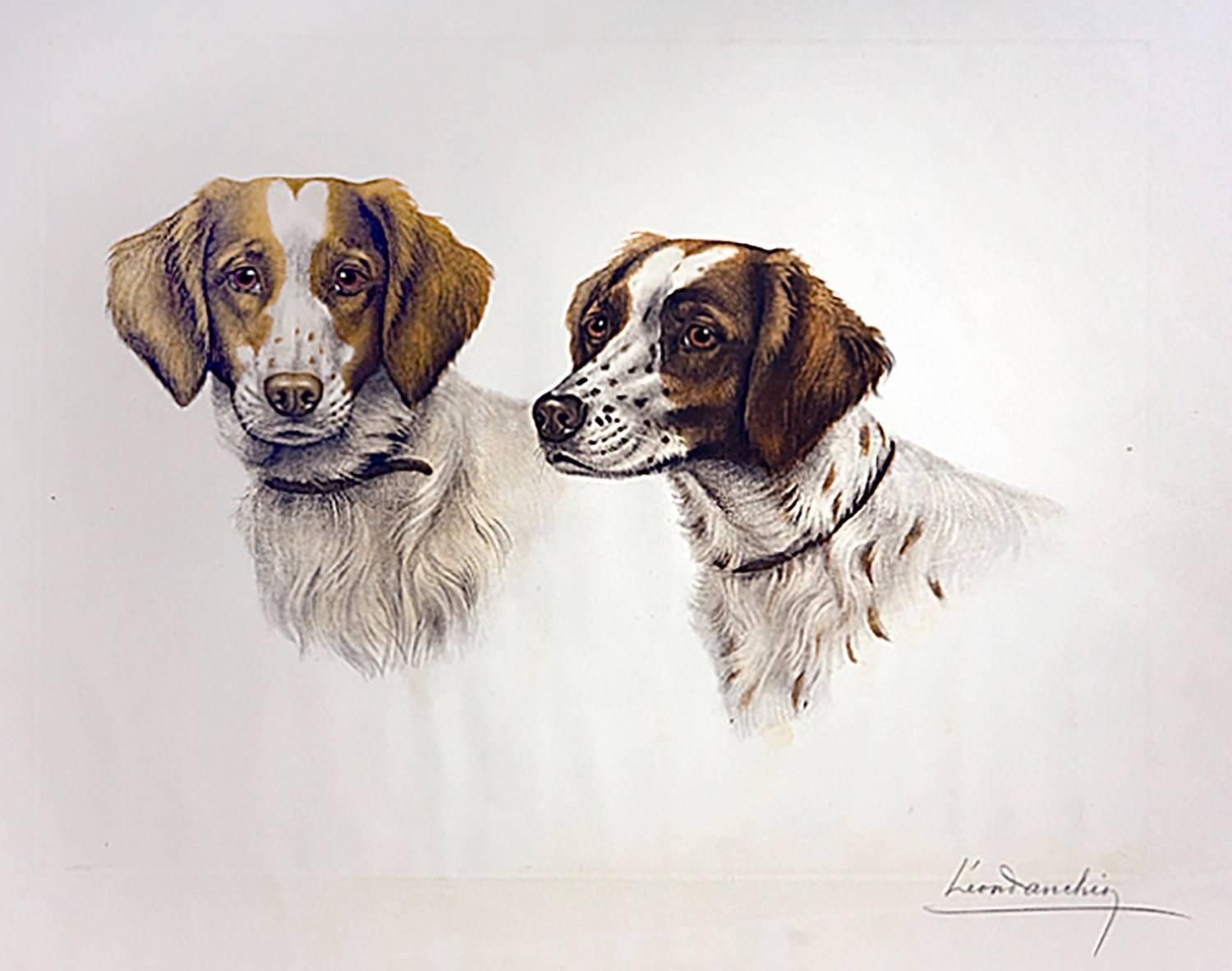 brittany spaniels from a unique collection of animal prints at