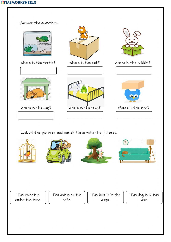 Pets online worksheet and pdf