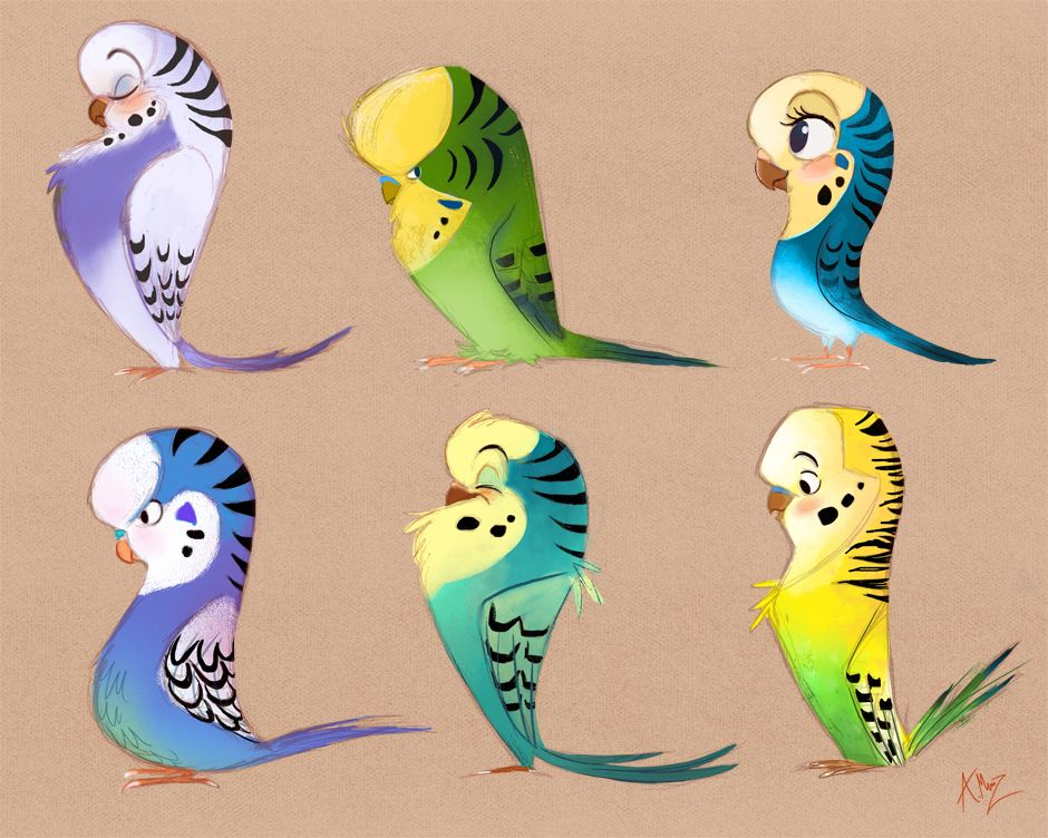 Cute Cartoon Character Design : Cute cartoon parrots character design pinterest
