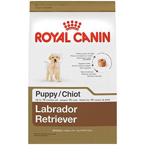 7 Best Dog Foods For Labrador Retrievers Puppy Food Dry Dog