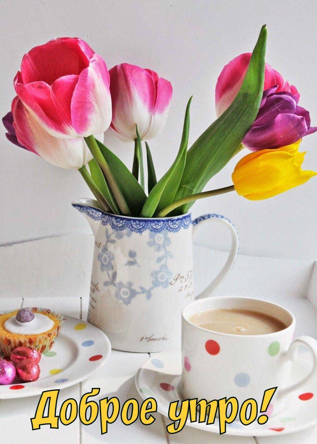 Для фото, картинки доброе утро с тюльпанами