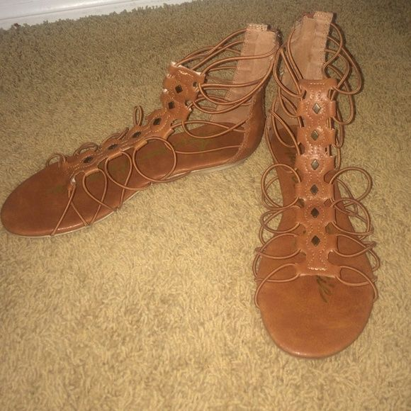 Gladiator sandals Worn a couple times but in perfect condition. Shoes Sandals