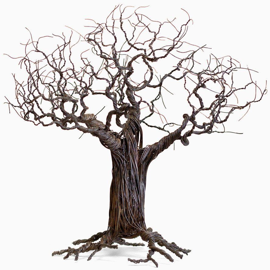 Wire tree baobab out of africa pinterest wire trees for How to make a wire tree of life sculpture