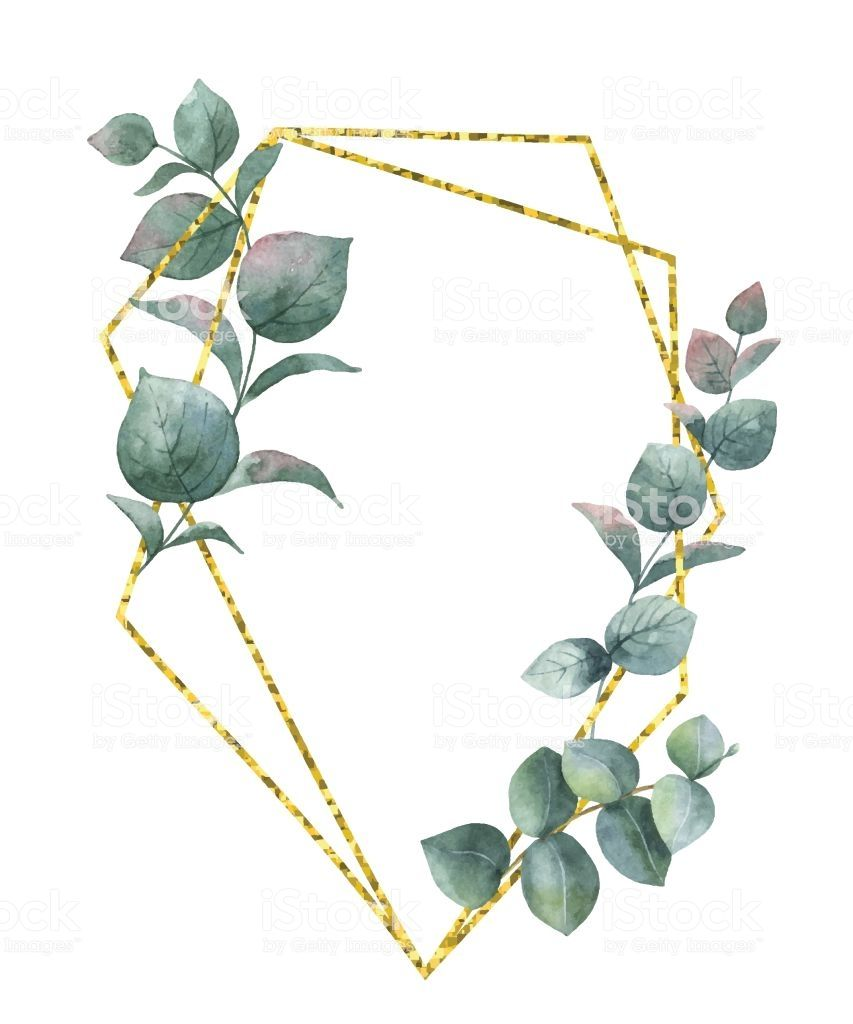 Watercolor Composition From The Branches Of Eucalyptus And Gold Geometric Flower Free Watercolor Flowers Flower Drawing