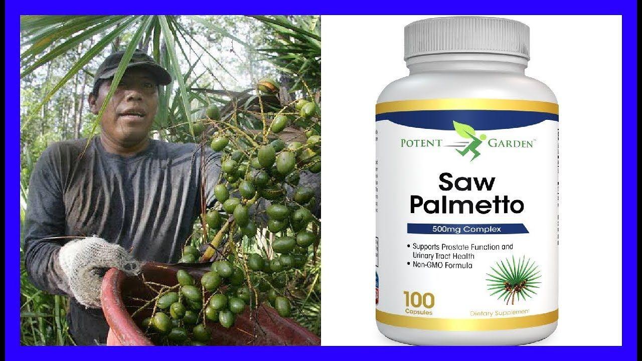 saw palmetto prostata benefícios