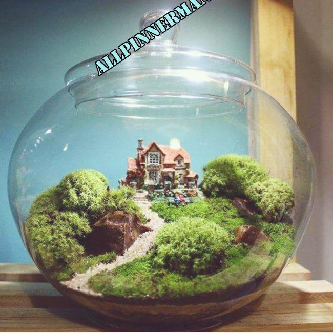 Photo of Stunning DIY Tea Cup Fairy Garden Ideas 10 | Miniature fairy gardens, Mini fairy…