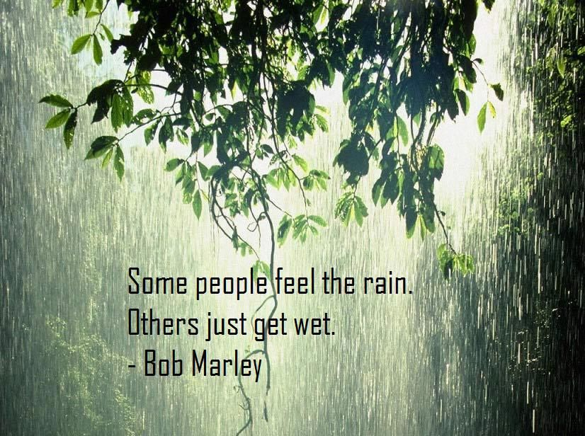 Some people feel the rain. Others just get wet.  ~ Bob Marley