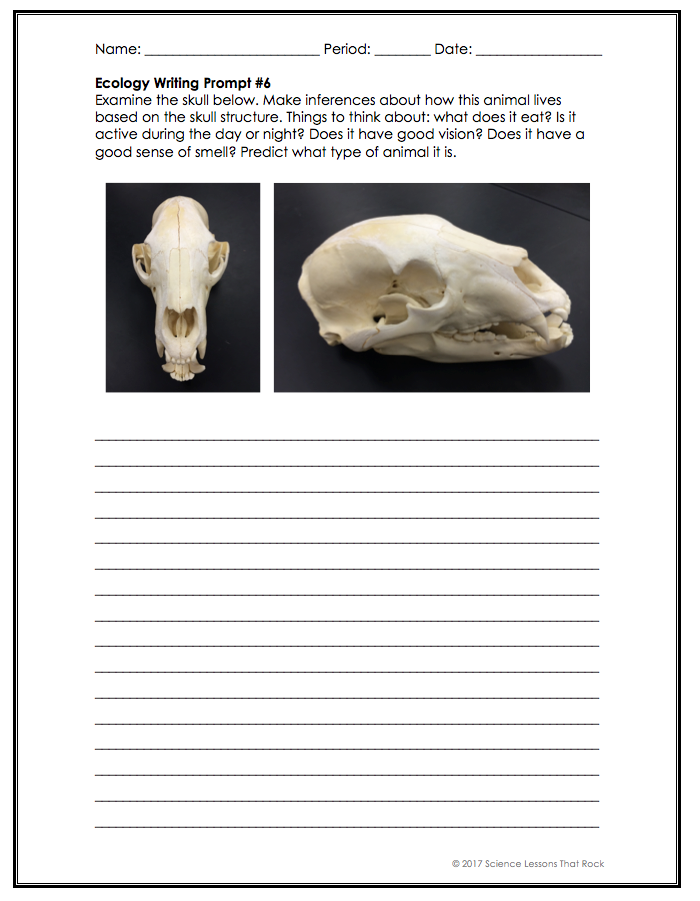 Ecology Writing Prompts | Work | Teaching biology, Science