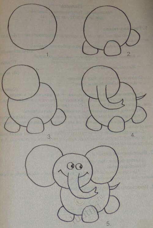 Elephant Drawing And Learning Basic Tricks Drawing Lessons For
