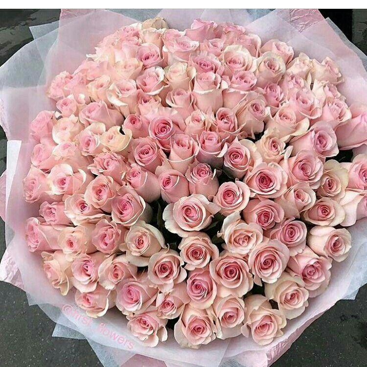 использования картинки с днем рождения цветы охапки плоды имеют красивый