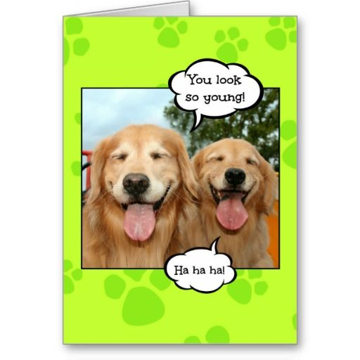 Funny Golden Retriever Golden Oldie Birthday Card Zazzle Com