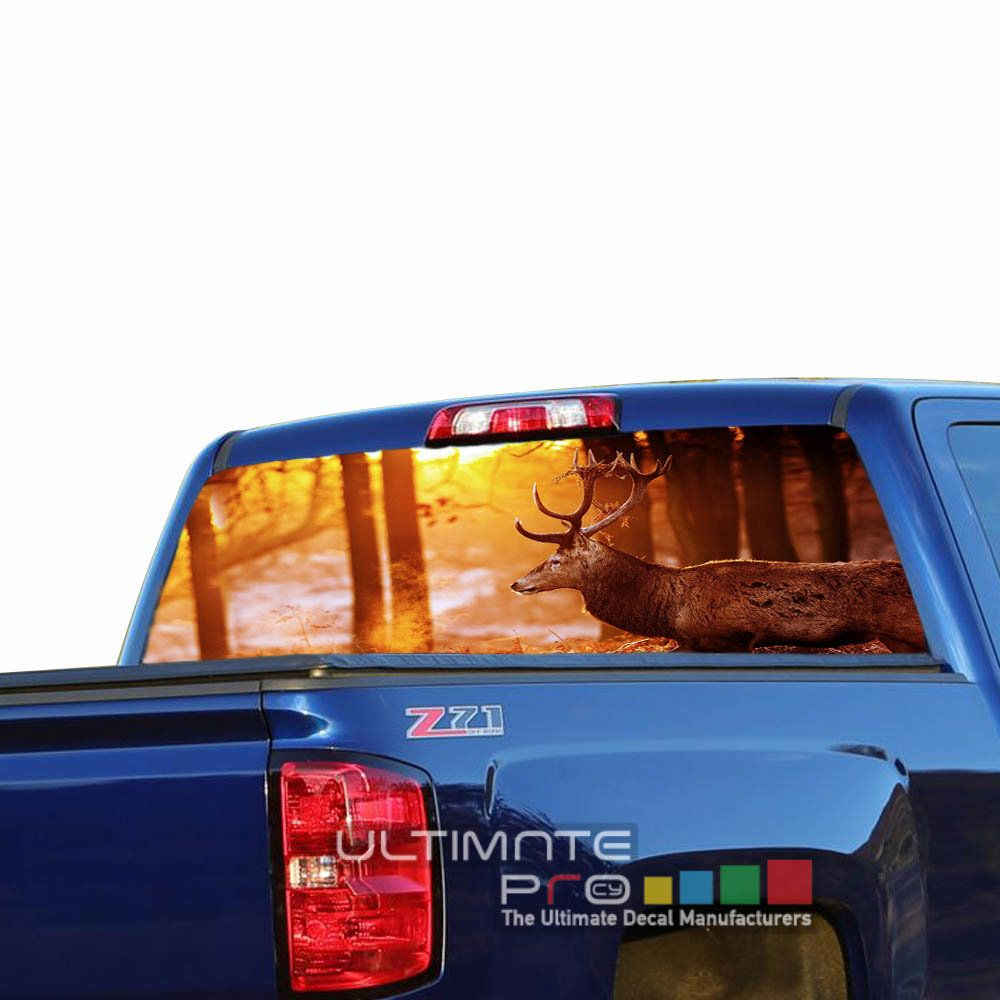 Pick-Up Truck Perforated Rear Window Wrap Virginia