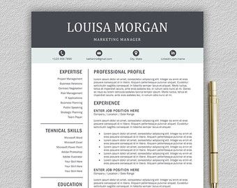Professional Resume Template For Word   And  Page Resume