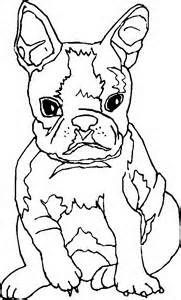 Baby Boston Terrier Dog Coloring Page Baby Boston Terriers Boston Terrier Kids