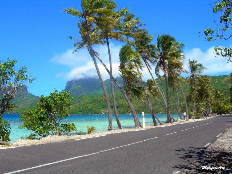 Fonds D Ecran Voyages Oceanie Fonds D Ecran Tahiti Vent A Bora Bora Par Gwen13 Hebus Com Tahiti Voyage Et Fond Ecran