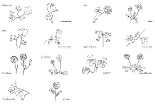 mini w rterb cher pflanzen pdf labb onlineshop tatoo pinterest pflanzen kr uter und. Black Bedroom Furniture Sets. Home Design Ideas