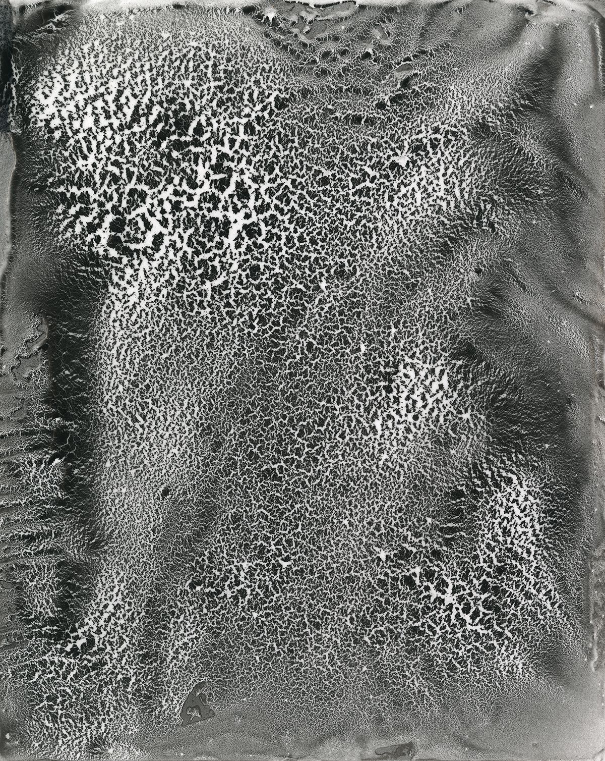 Discord 01 Art, Discord, Science art