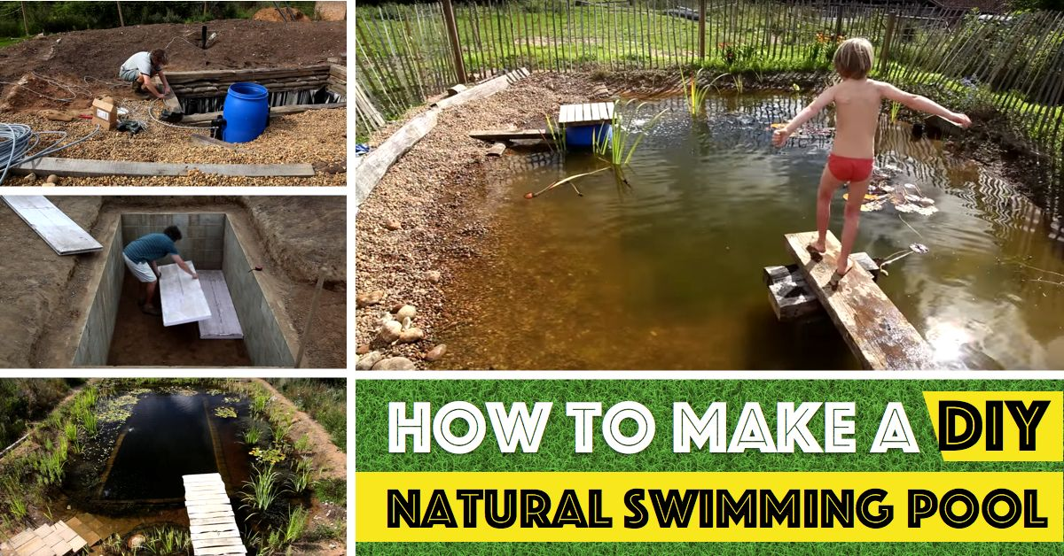 Introduce Unbeatable Charm To Your Backyard With This All Natural Swimming Pond Natural Swimming Ponds Natural Swimming Pool Outdoor