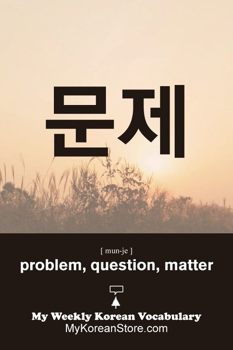 ❋ Learn Korean - Problem / question (mykoreanstore.com)