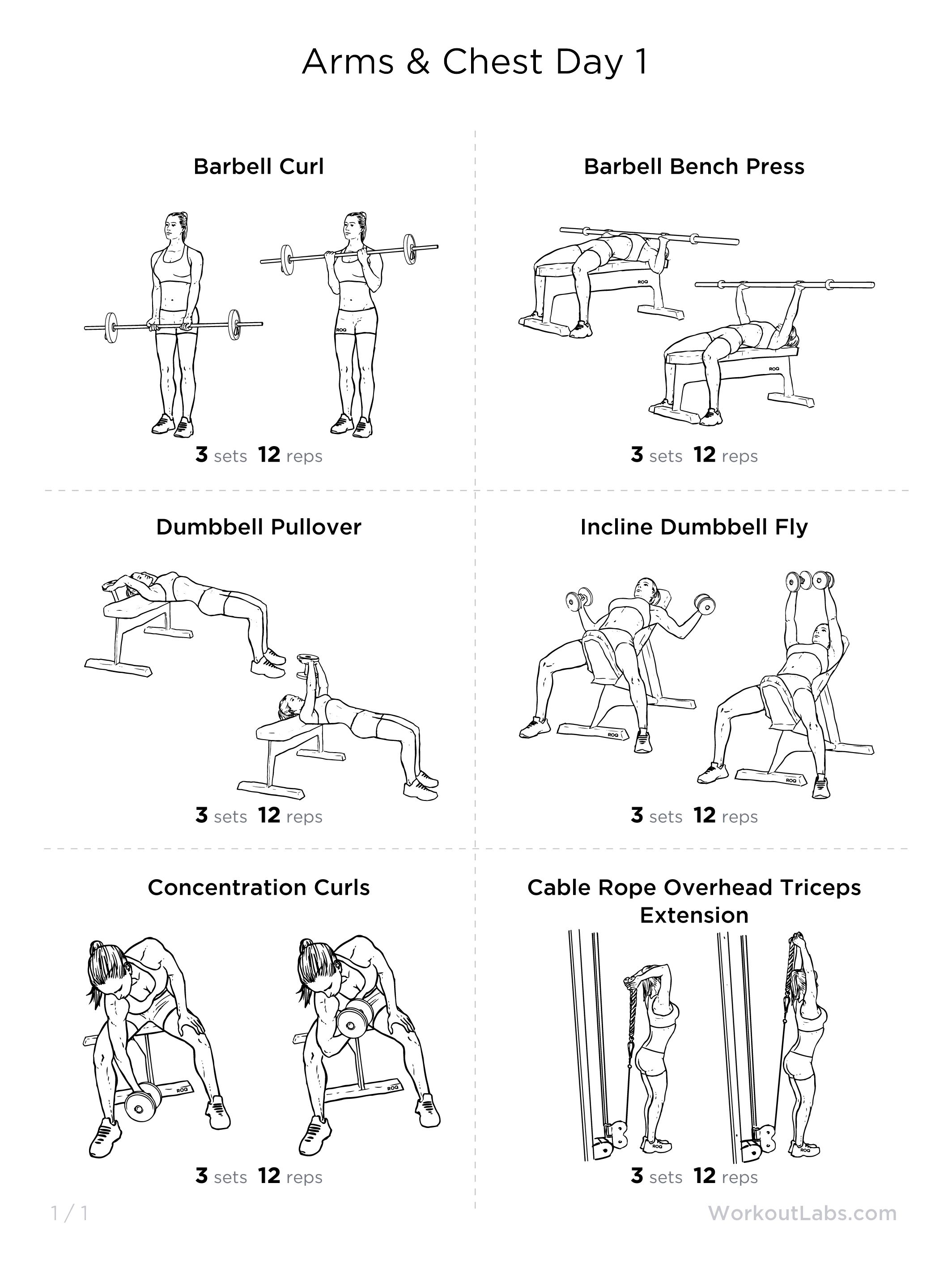 Arms Amp Chest Day 1