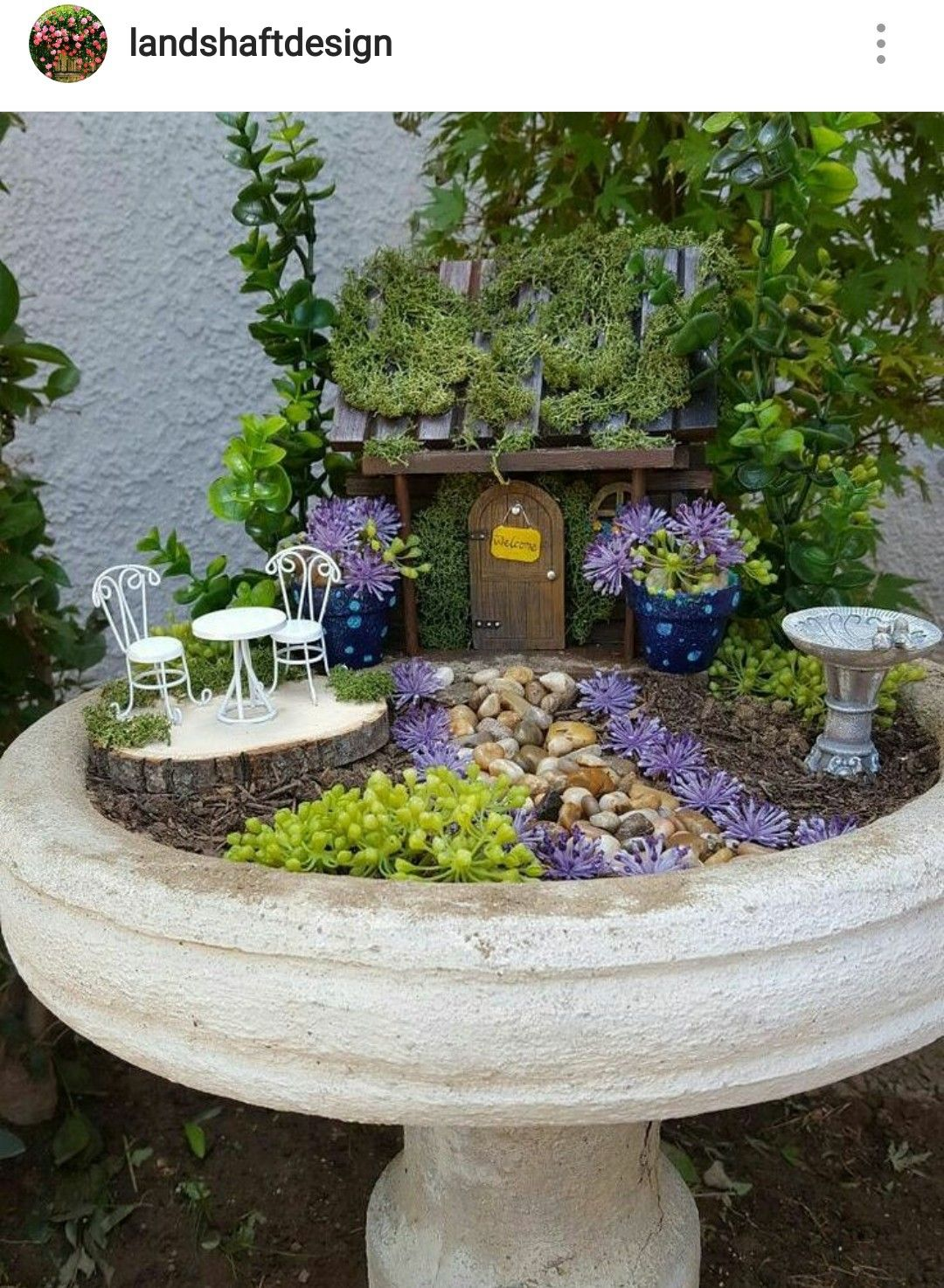 Small Crop Of Unique Fairy Garden Containers