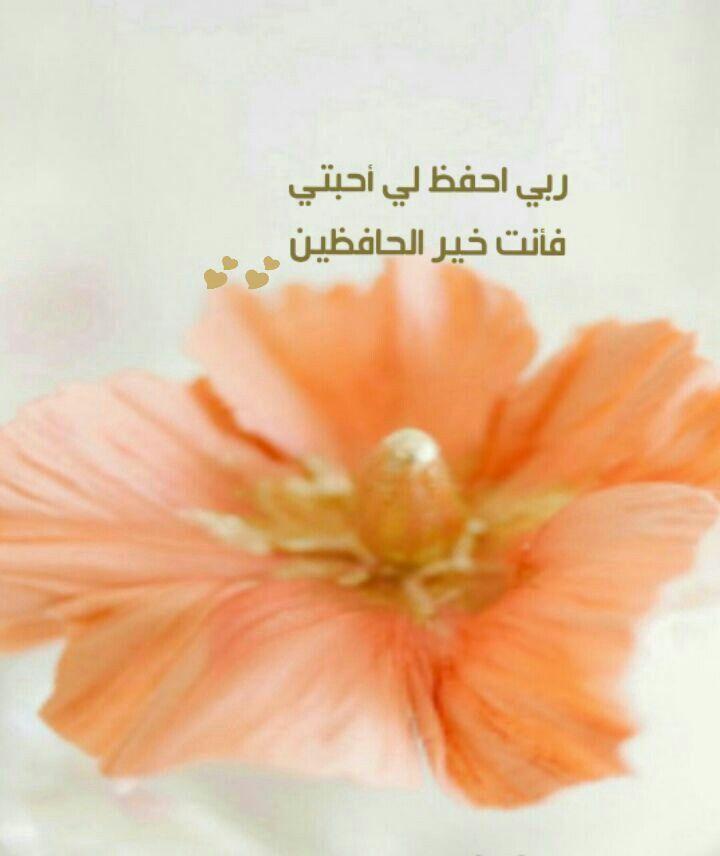 ربي احفظ لي أحبتي Islam Peace Be Upon Him Peace