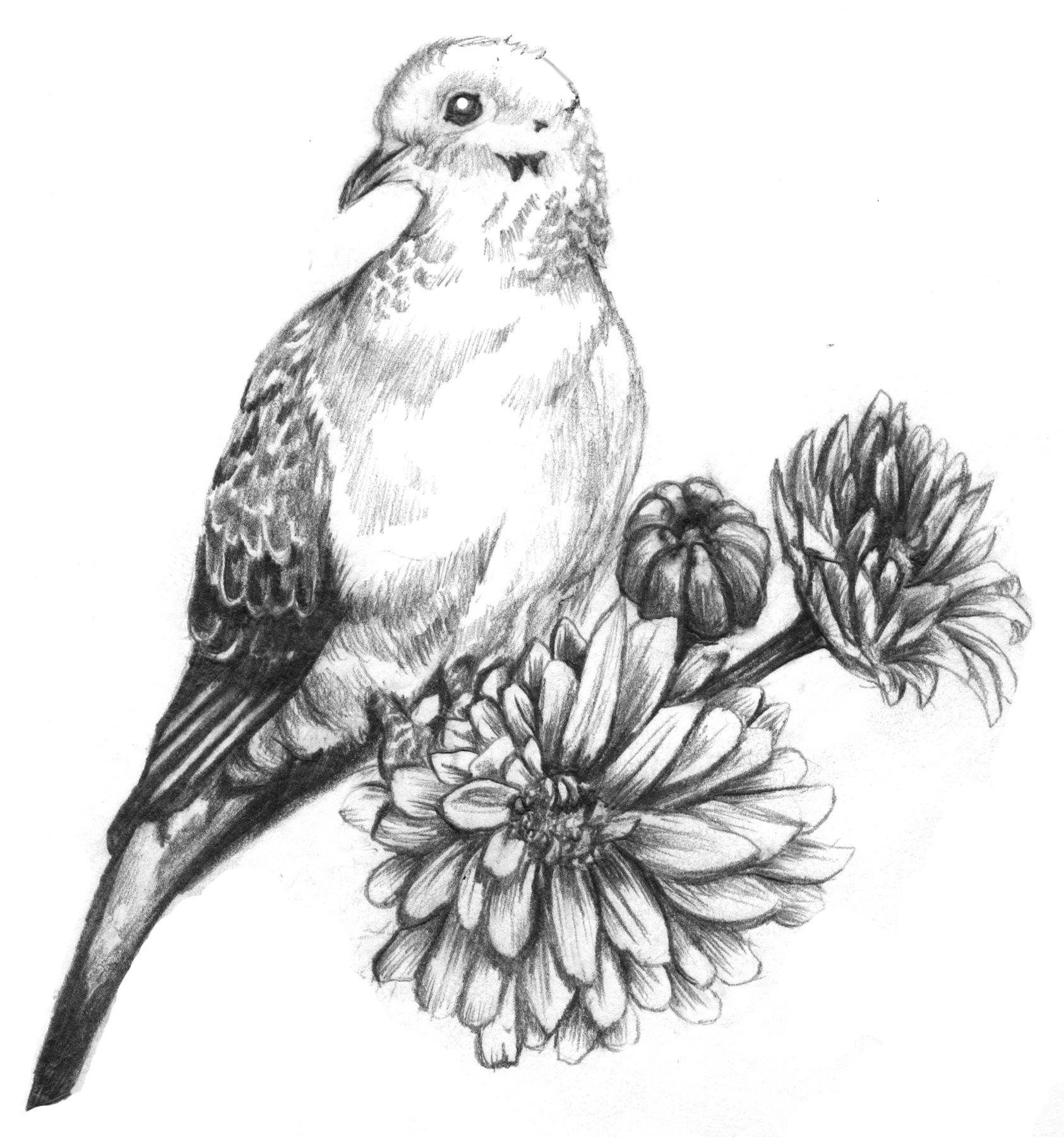 Memorial Tattoo Idea Dove Tattoo Tribute Tattoos Mourning Dove
