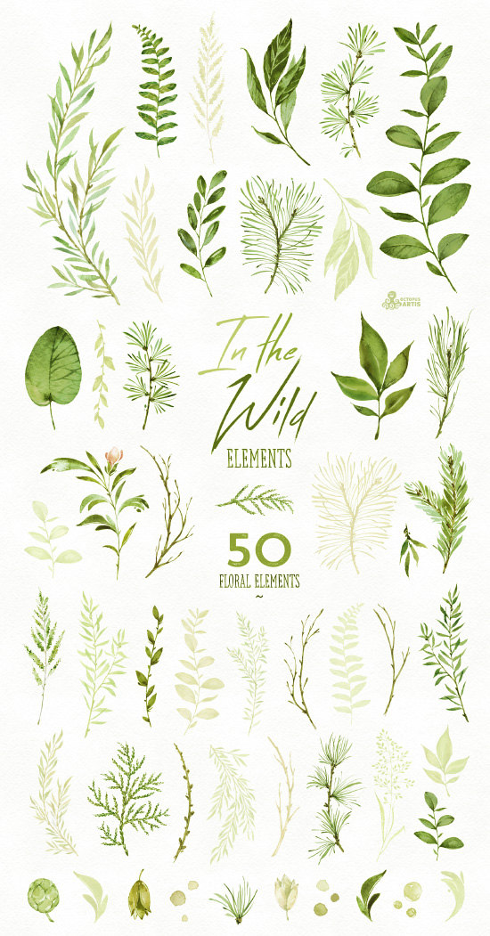 Photo of In the Wild. 50 Individual watercolor floral Elements, leave…
