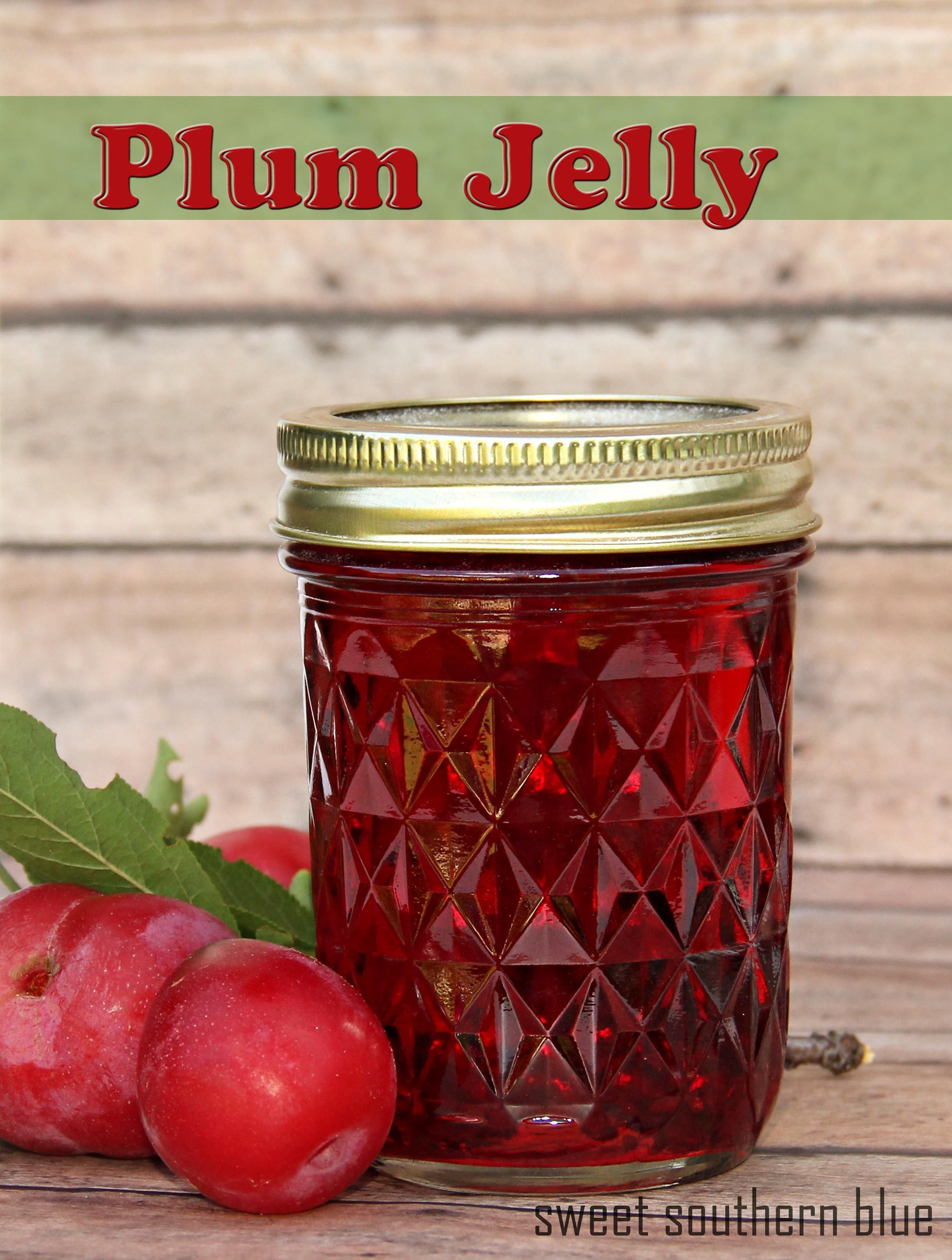 Plum Jelly Recipe With Pectin Sweet Southern Blue Plum Jelly Recipes Plum Jelly Jelly Recipes