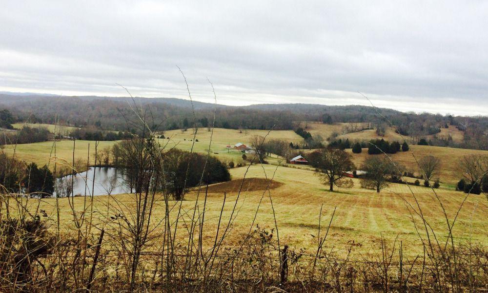 Williamson County farmland.