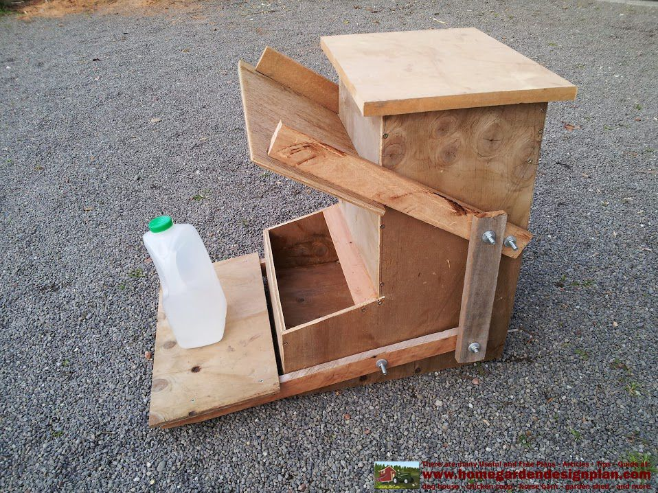 CF100 - Building Success - Automatic Chicken Feeders Plans - How To Build A Chicken Feeders - Frank Vanh Nguyen - Picasa Webalbums
