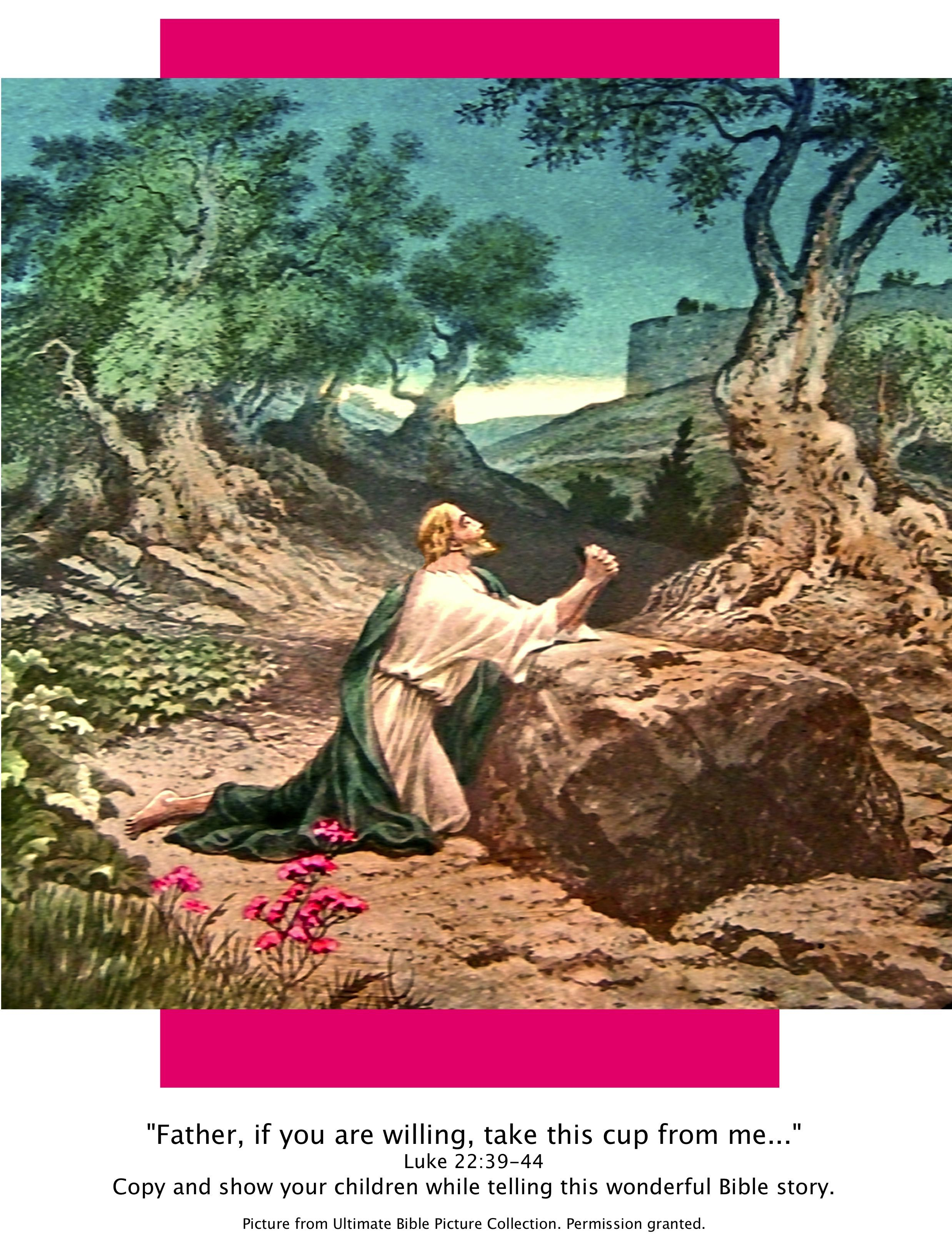 Bible Story Picture Of Garden Of Gethsemane Lk 22 39 44 Show Your Children While Telling This