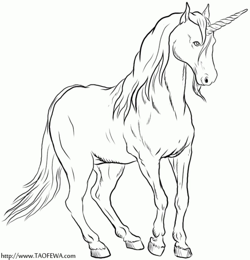 A Realistic Unicorn Coloring Page For Older Kids (With ...