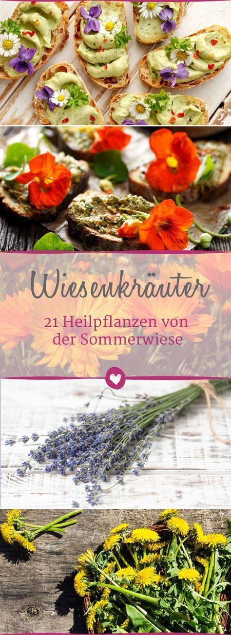 Photo of Wiesenkräuter: 21 Heilpflanzen von der Sommerwiese