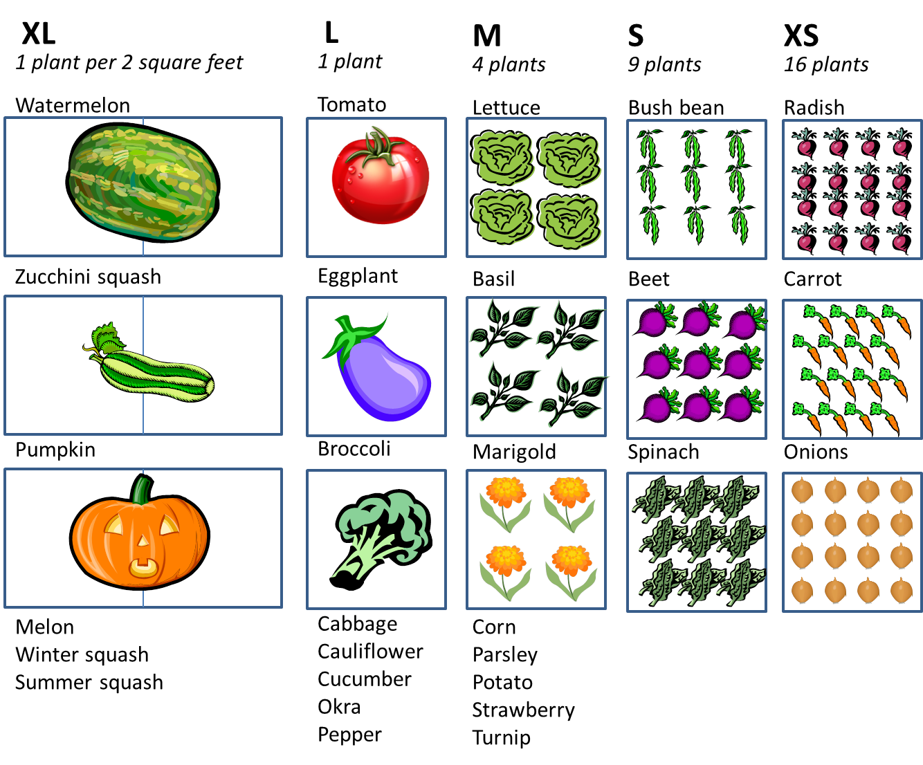 8111df019cae35bd53f73afc48fe7324 - Best Vegetables For Square Foot Gardening