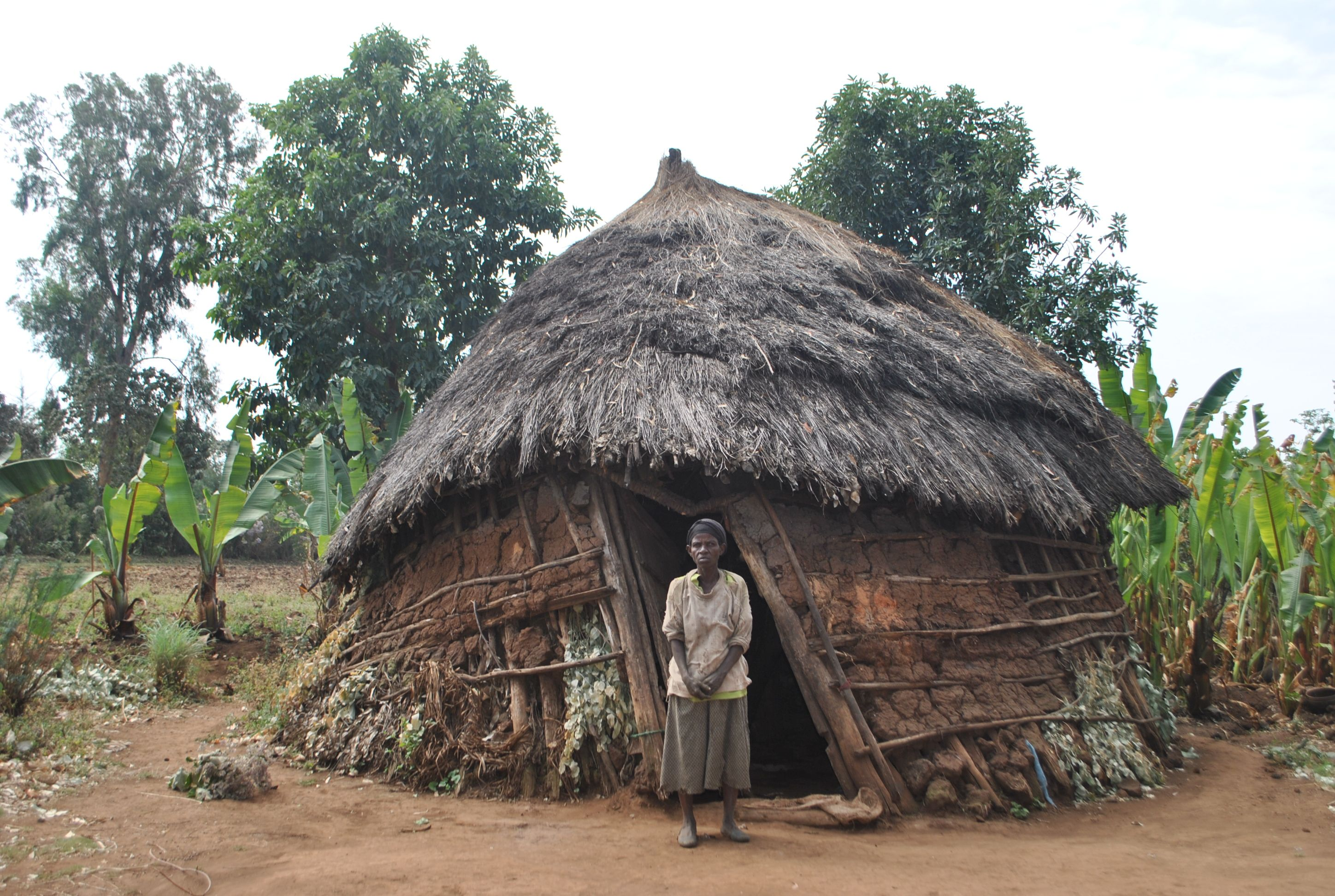 At Home With Atura's Family African hut, Vernacular