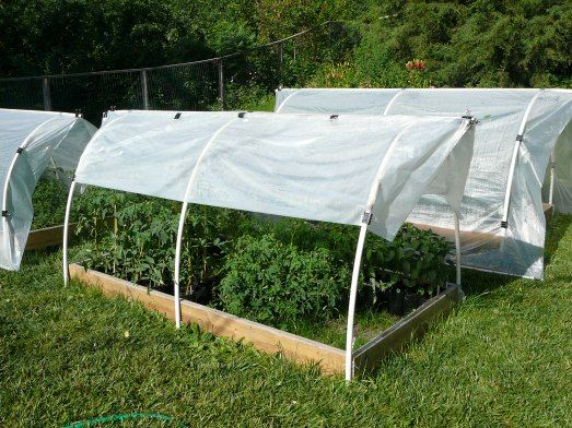 How To Build A Raised Bed Hoop House With Images Cheap Greenhouse