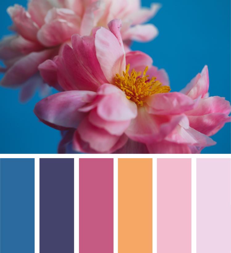Dunkelblau Mittelblau Warme Farben Kombinieren