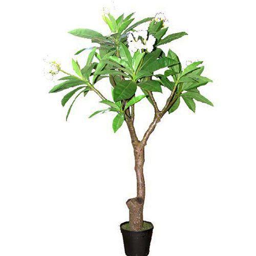 Artificial Trees Artificial Silk Trees Fake Trees Fake Trees Flowering Trees Artificial Trees