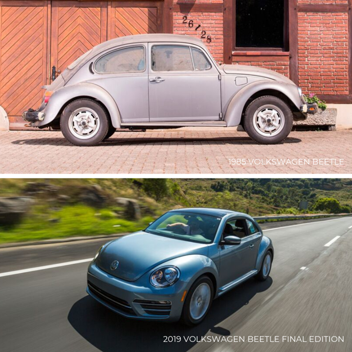TBT 1995 VW Beetle vs. 2019 VW Beetle Final Edition Vw
