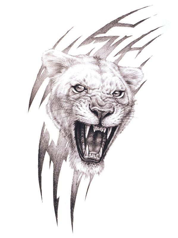 roaring lioness tattoo ideas tattoo drawings lion