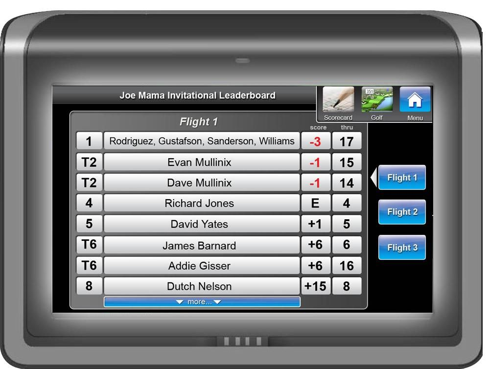 13++ Apt golf leaderboard information