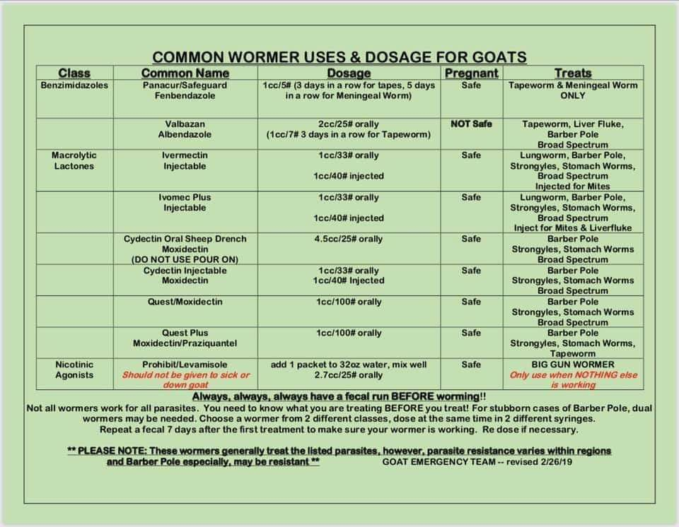 Goat deworming chart goats mini hereford liver fluke